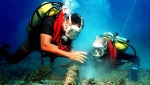 Être proactif Plongeurs