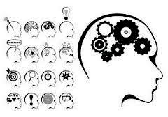 Cerveau Talent1