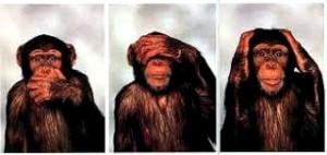 Trois singes 3 sens1