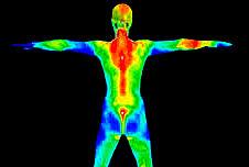 Avez-vous conscience de vos «différents corps» ? Comment les gérez-vous ?